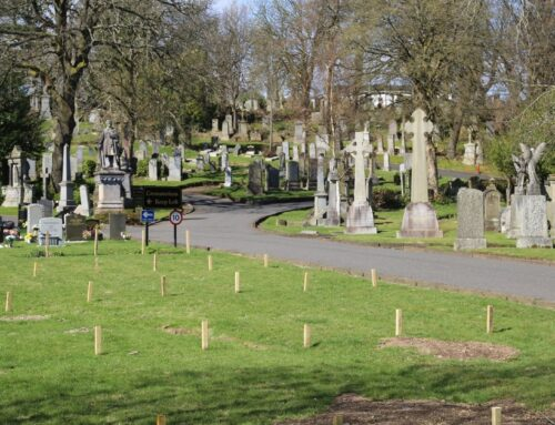Burial Plots At Woodside Available in First for Over 25 Years